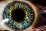 ludzkie niebieskie oko