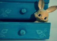 królik - zabawka
