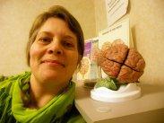 Kobieta z modelem mózgu